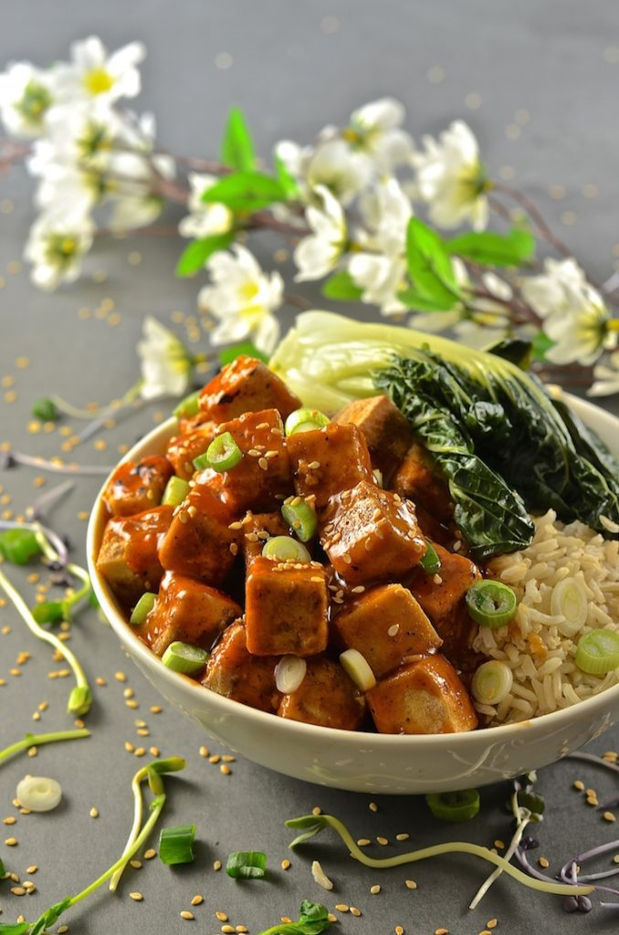 Sticky-Chili-Ginger-Tofu-4-copy-678x1024