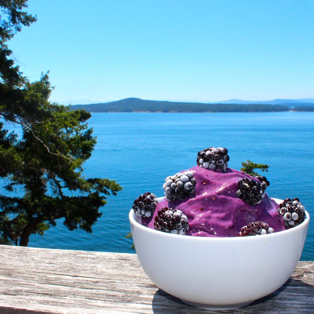 blackberry-protein-nice-cream-vegan