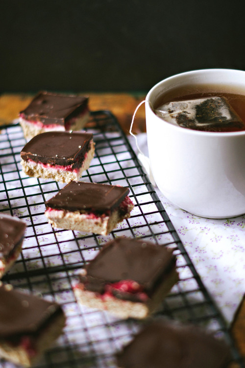 chocolate raspberry no bake coconut bars