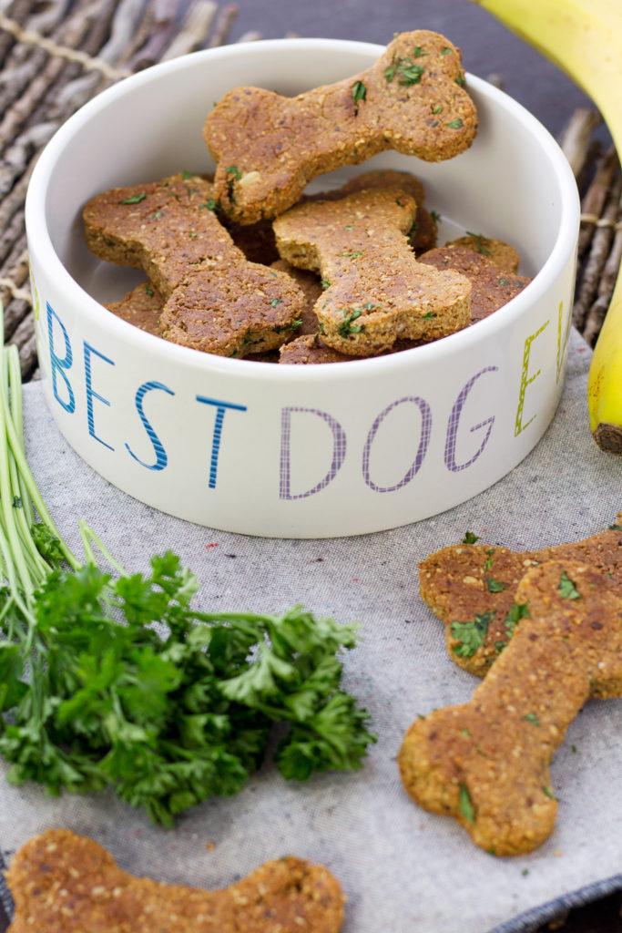 Homemade Vegan Dog Treat Recipe With Nut Pulp