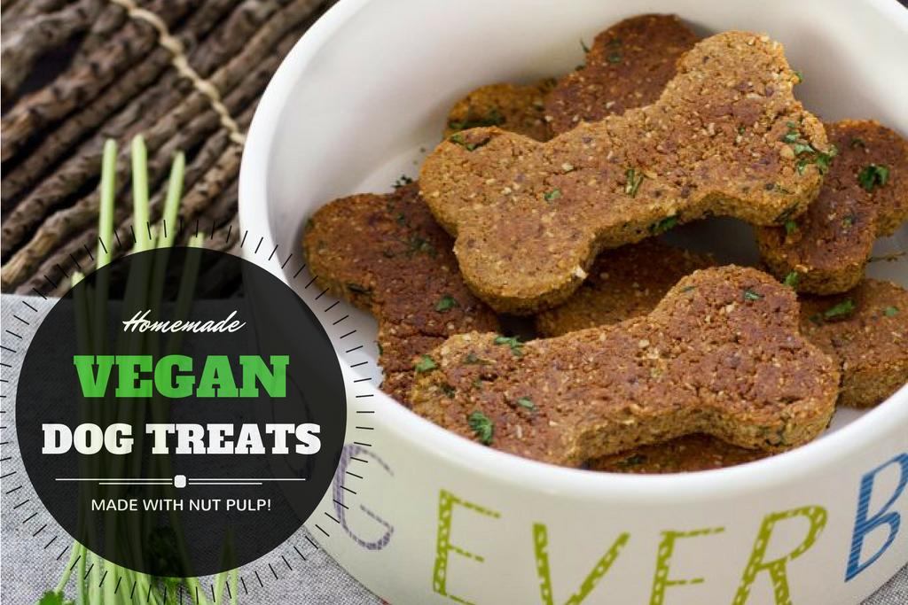 Homemade Vegan Dog Treat Recipe With Nut Pulp Serving Realness
