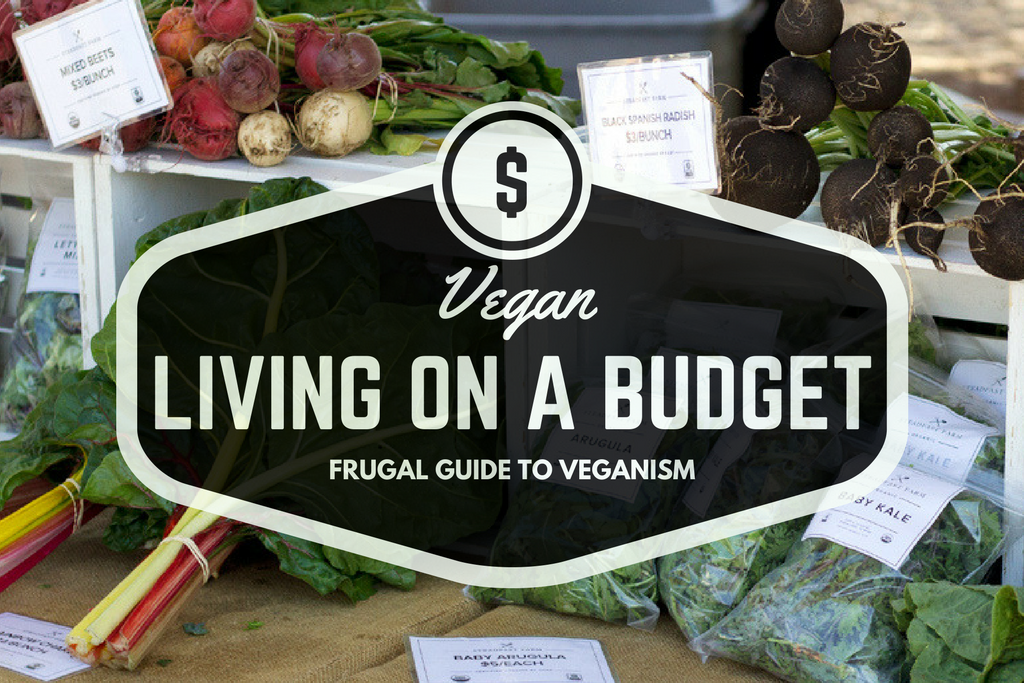 Vegan living on a budget. My guide to living frugal while following a vegan diet. Tips on eating organic, DIY, online shopping, and more!