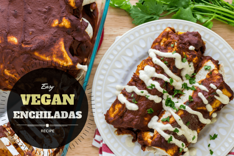 Easy vegan Enchiladas the whole family will enjoy